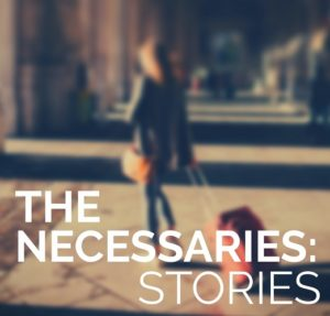Book cover The Necessaries by Misty Urban