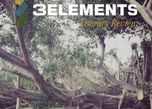 cover of 3Elements Review